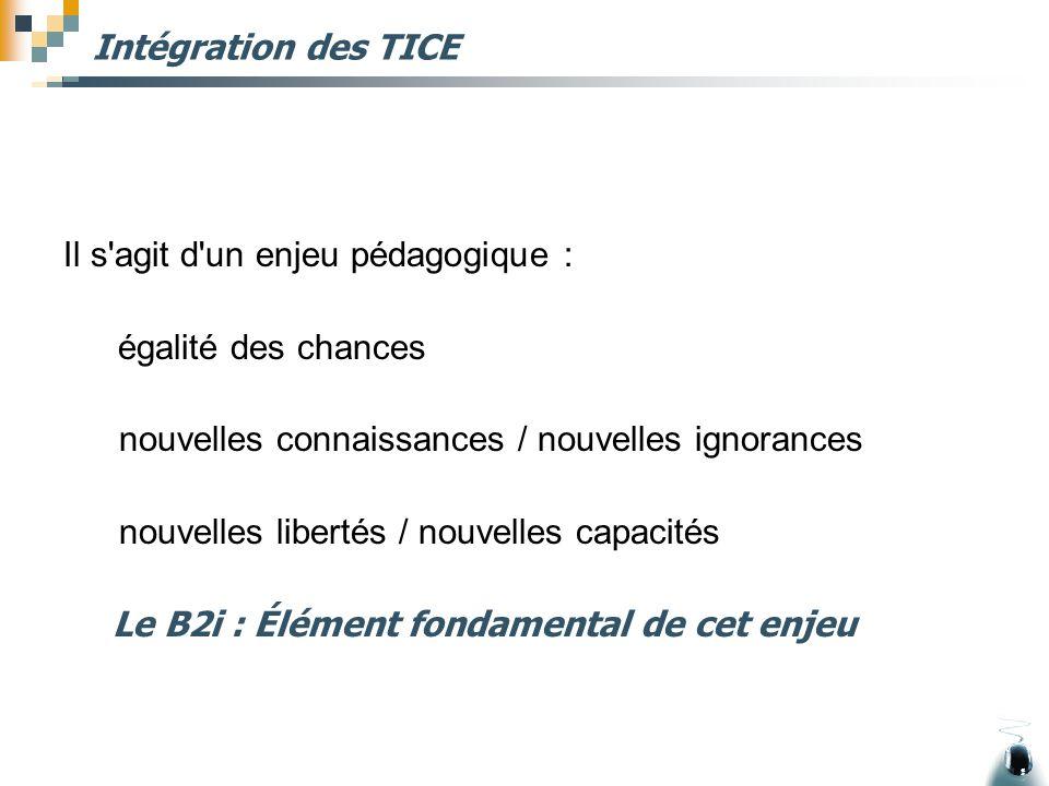 Intégration des TICE Il s'agit d'un enjeu pédagogique : égalité des chances nouvelles connaissances / nouvelles ignorances nouvelles libertés / nouvel