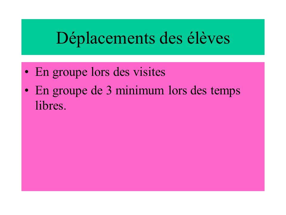 Déplacements des élèves En groupe lors des visites En groupe de 3 minimum lors des temps libres.