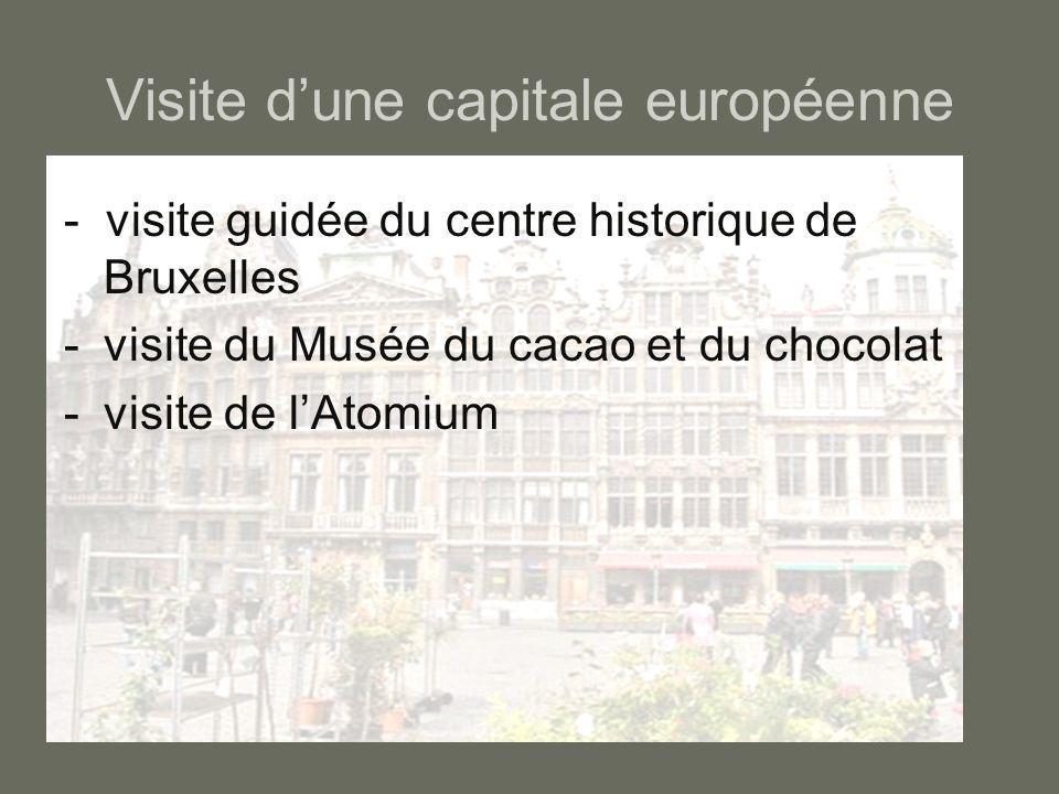 Visite d'une capitale européenne - visite guidée du centre historique de Bruxelles -visite du Musée du cacao et du chocolat -visite de l'Atomium
