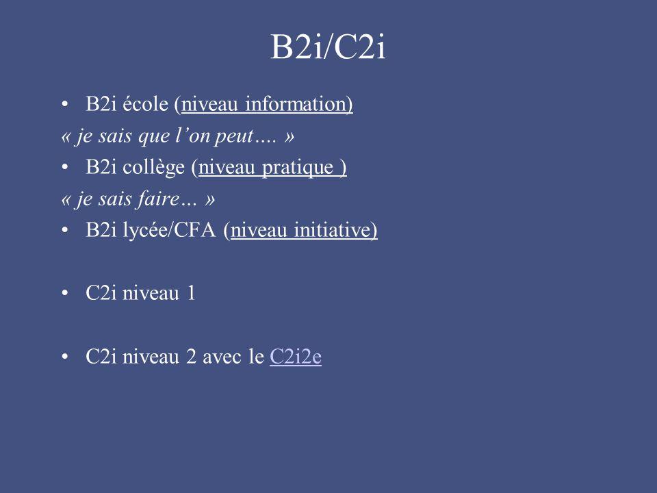 B2i/C2i B2i école (niveau information) « je sais que l'on peut….