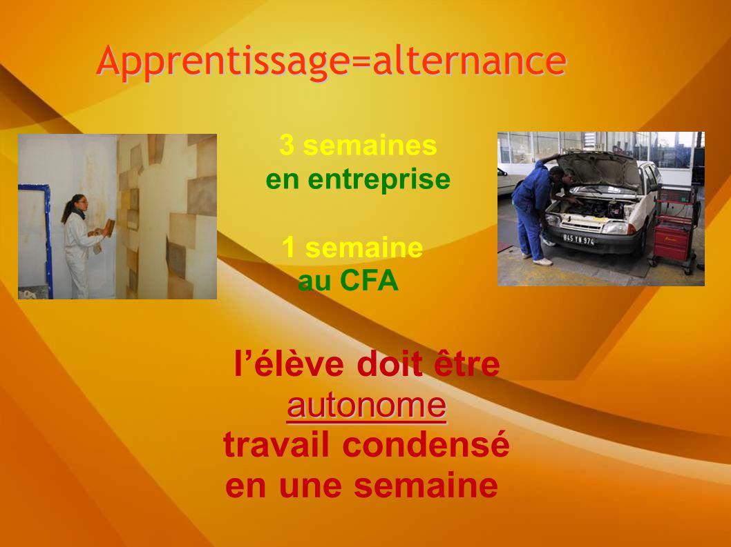 Apprentissage=alternance 3 semaines en entreprise 1 semaine au CFA l'élève doit être autonome travail condensé en une semaine