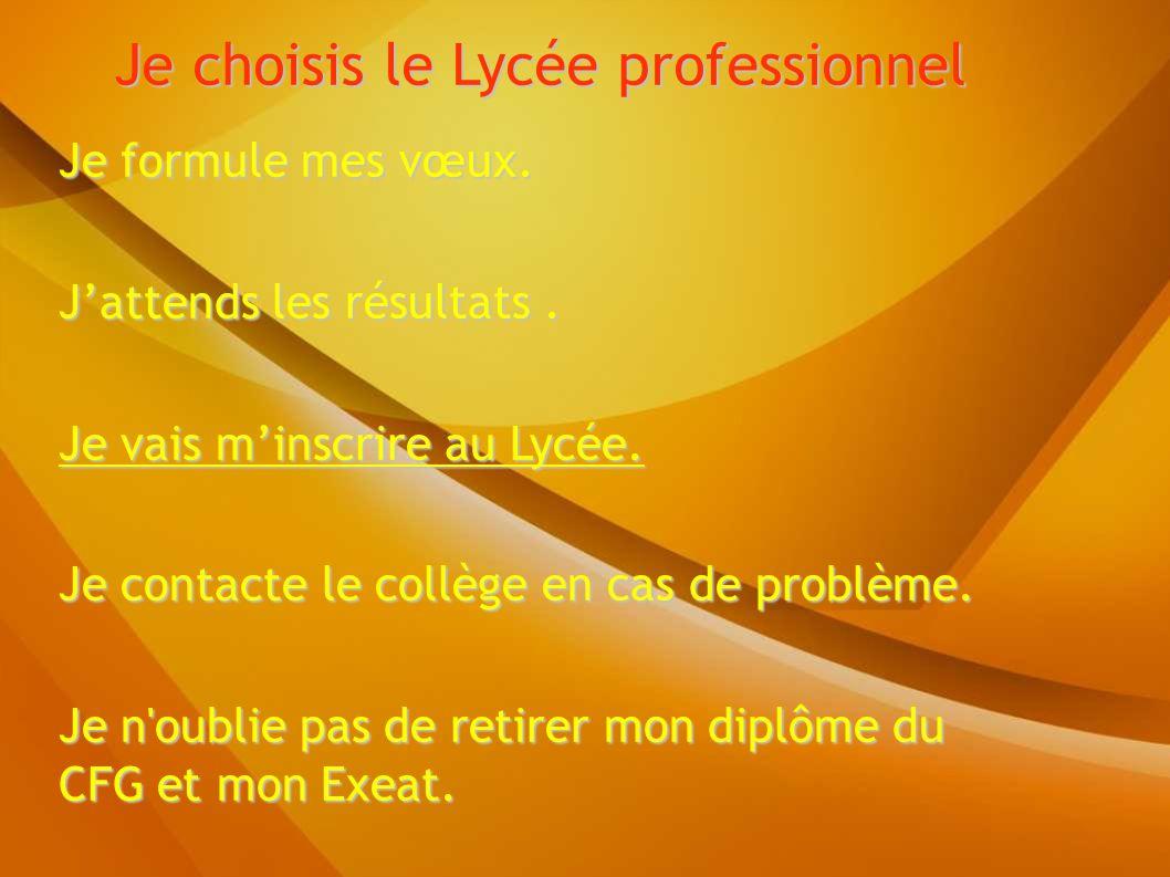 Je choisis le Lycée professionnel Je formule mes vœux.