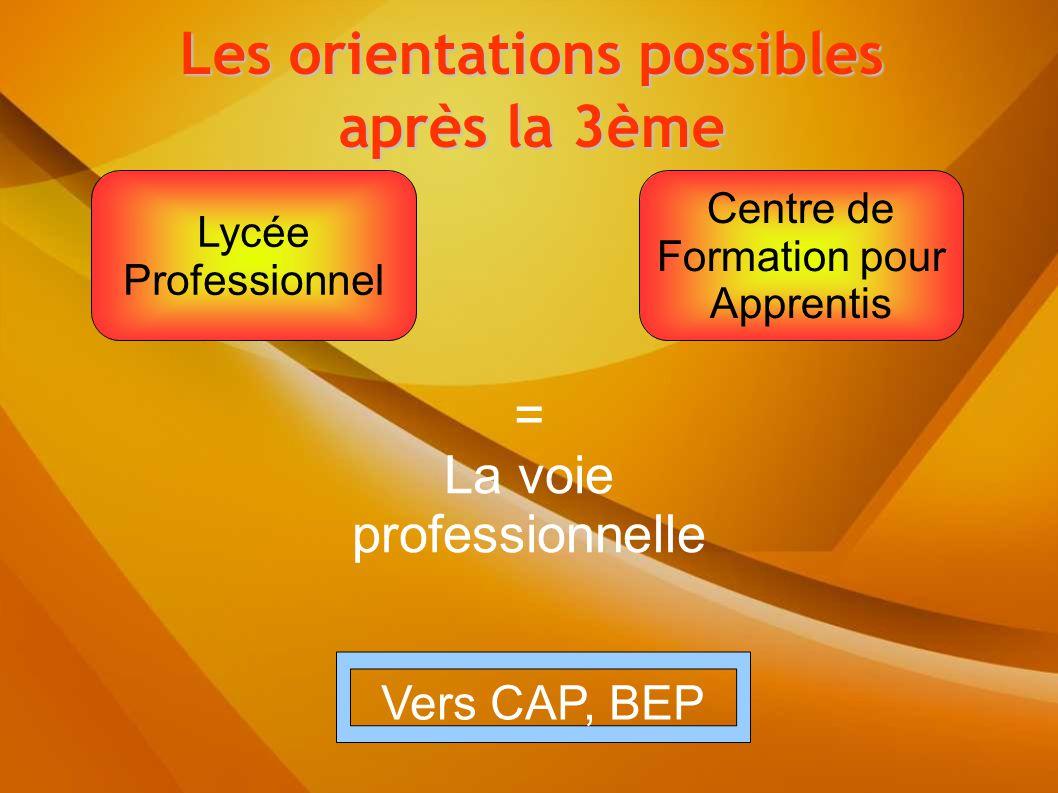 = La voie professionnelle Lycée Professionnel Centre de Formation pour Apprentis Les orientations possibles après la 3ème Vers CAP, BEP