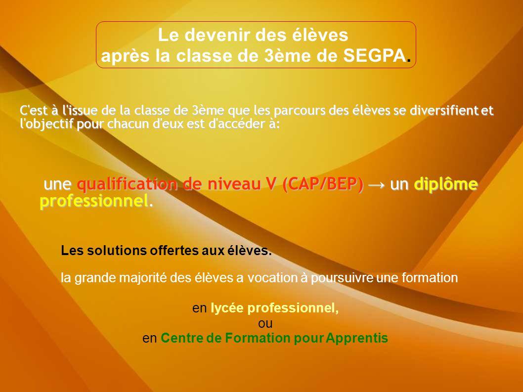 C est à l issue de la classe de 3ème que les parcours des élèves se diversifient et l objectif pour chacun d eux est d accéder à: une qualification de niveau V (CAP/BEP) → un diplôme professionnel.