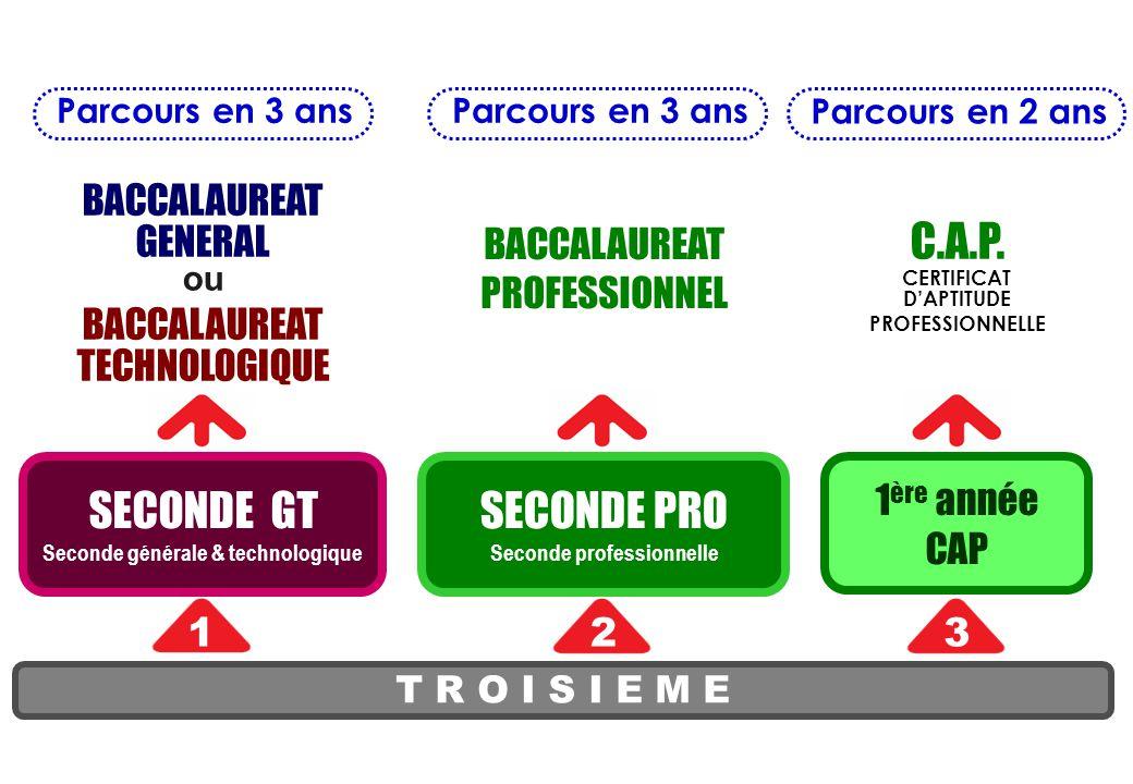 Recrutements spécifiques 1ers cas - l'enseignement d'exploration Arts du cirque (Châtellerault), - la seconde spécifique Hôtellerie (La Rochelle), - la seconde professionnelle photographe (Bressuire), - la seconde professionnelle Sécurité-prévention (LP Le Dolmen à Poitiers), recrutement terminé - la seconde professionnelle élevage canin et félin (Montmorillon), - le BEPA activités hippiques (Montmorillon).