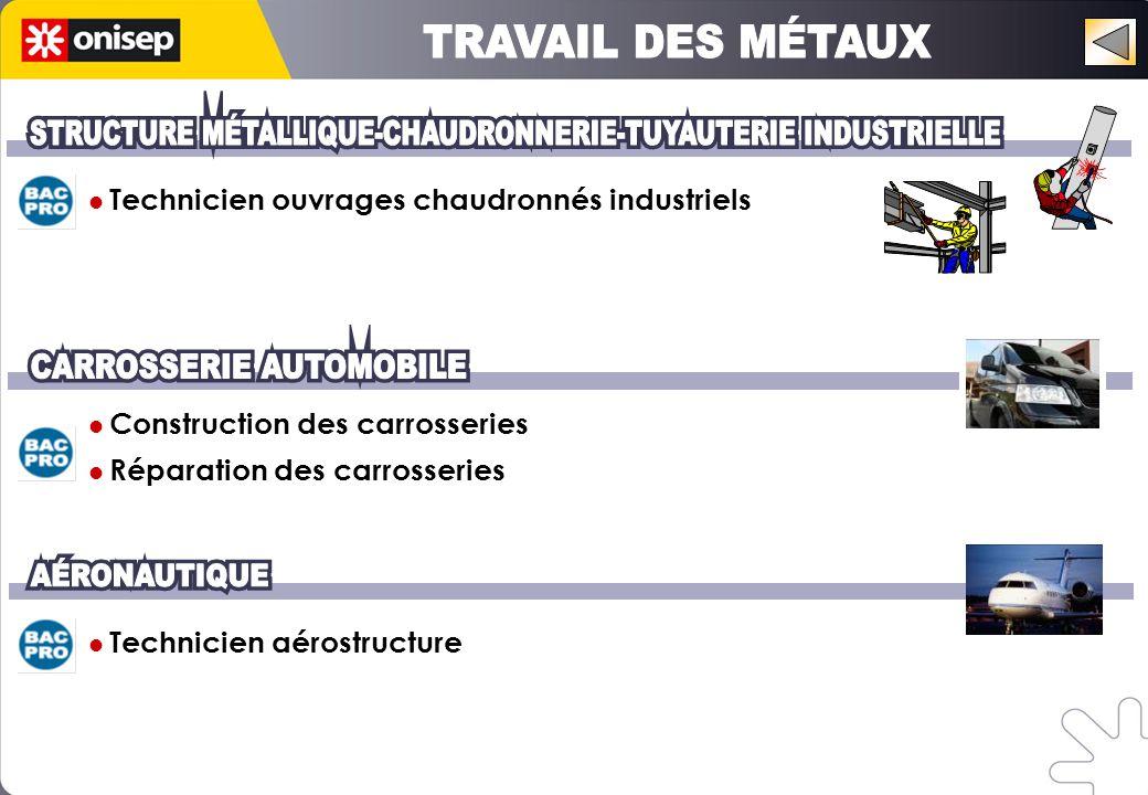 Technicien ouvrages chaudronnés industriels Construction des carrosseries Réparation des carrosseries Technicien aérostructure