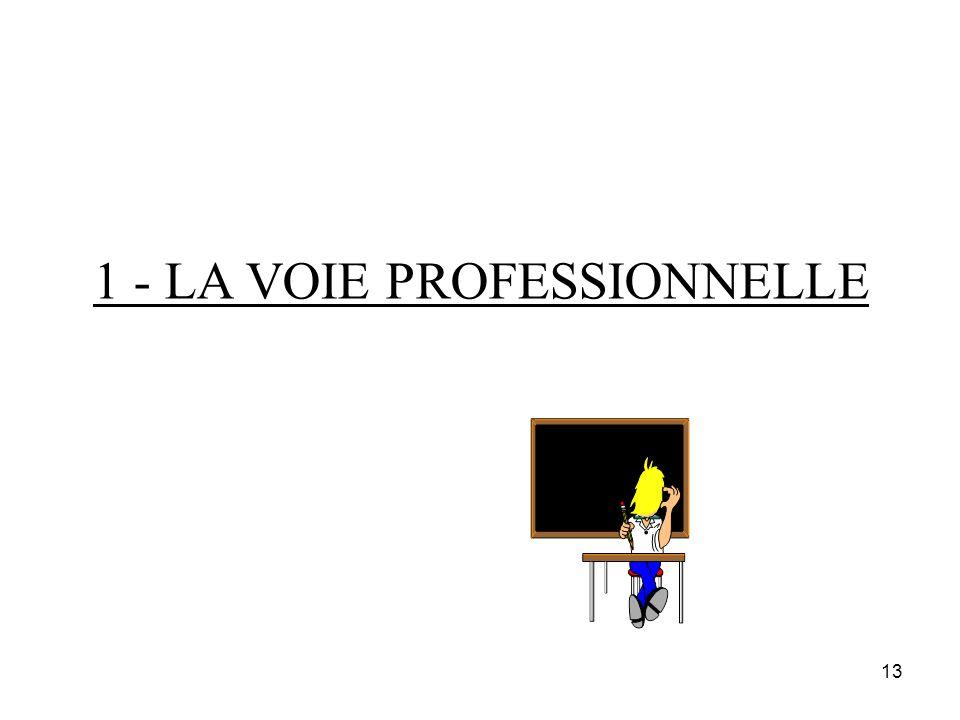 13 1 - LA VOIE PROFESSIONNELLE