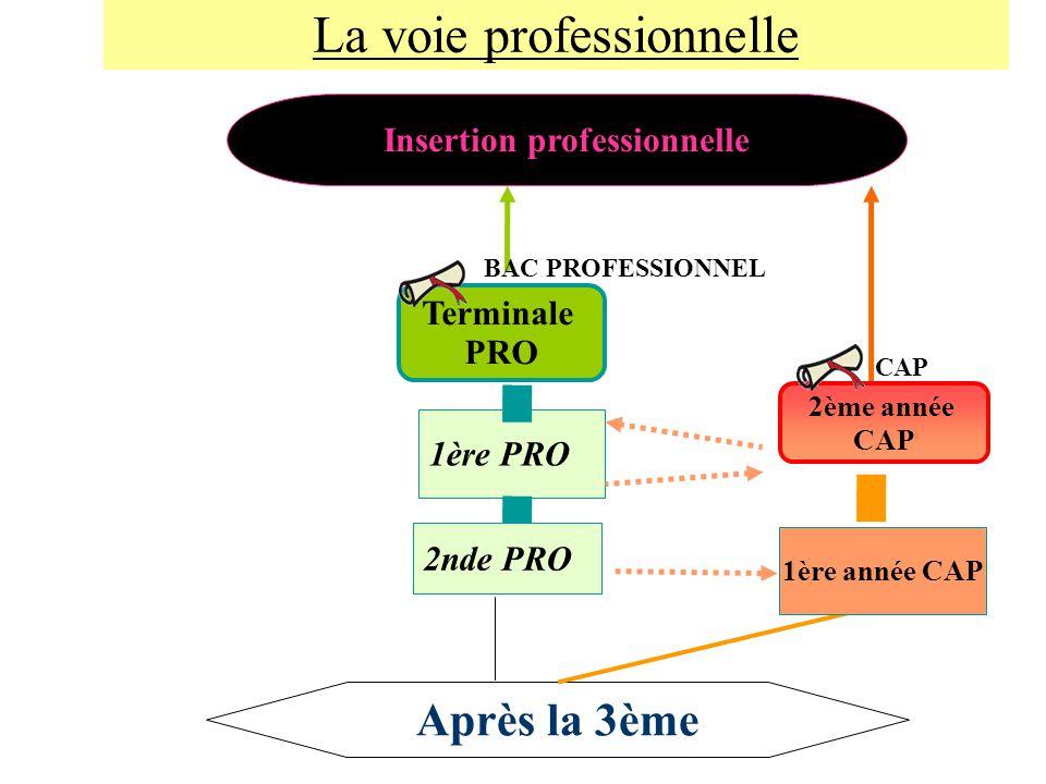 Insertion professionnelle Après la 3ème Terminale PRO 1ère PRO 2ème année CAP 1ère année CAP 2nde PRO BAC PROFESSIONNEL CAP La voie professionnelle