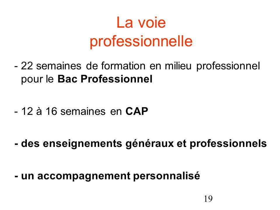 19 - 22 semaines de formation en milieu professionnel pour le Bac Professionnel - 12 à 16 semaines en CAP - des enseignements généraux et professionnels - un accompagnement personnalisé La voie professionnelle