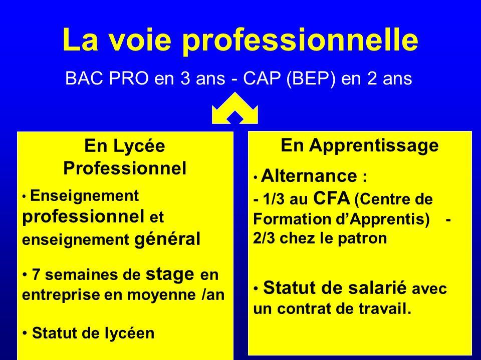 La voie professionnelle BAC PRO en 3 ans - CAP (BEP) en 2 ans En Lycée Professionnel Enseignement professionnel et enseignement général 7 semaines de stage en entreprise en moyenne /an Statut de lycéen En Apprentissage Alternance : - 1/3 au CFA (Centre de Formation d'Apprentis) - 2/3 chez le patron Statut de salarié avec un contrat de travail.