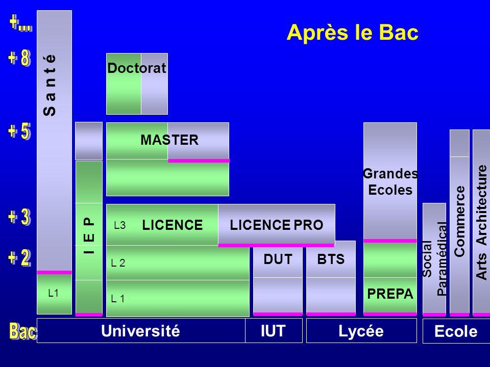 UniversitéIUTLycée Ecole L1 DUTBTS L3 L 2 PREPA Social Paramédical Arts Architecture S a n t é LICENCE PRO Grandes Ecoles MASTER Après le Bac Doctorat LICENCE I E P Commerce
