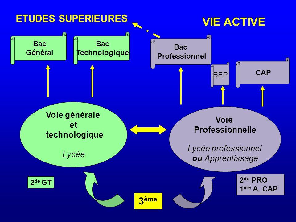 Voie générale et technologique Lycée Voie Professionnelle Lycée professionnel ou Apprentissage 3 ème BEP CAP Bac Professionnel Bac Général Bac Technologique ETUDES SUPERIEURES VIE ACTIVE 2 de GT 2 de PRO 1 ère A.