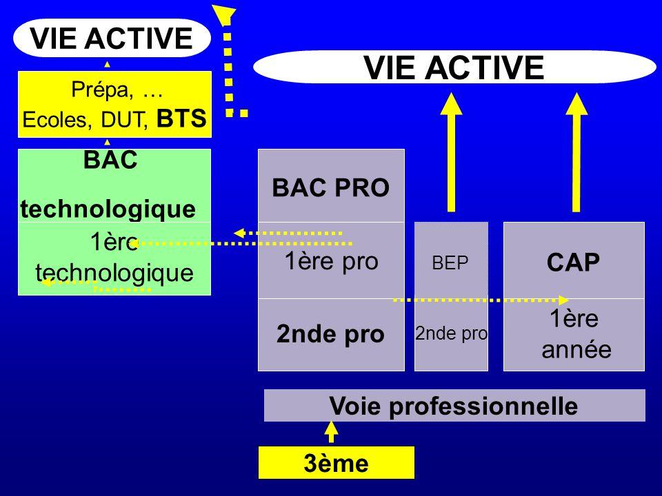 3ème 2nde pro BAC technologique VIE ACTIVE Voie professionnelle 1ère technologique 2nde pro BAC PRO 1ère pro 1ère année BEP CAP Prépa, … Ecoles, DUT, BTS
