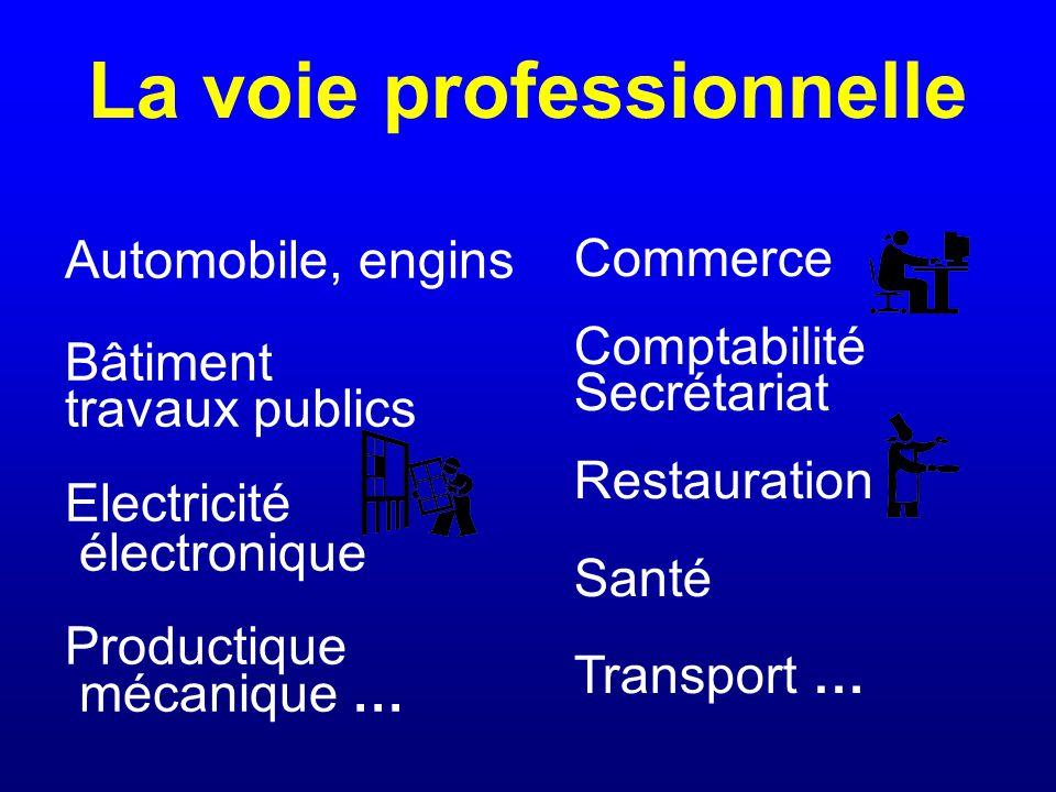 La voie professionnelle Automobile, engins Bâtiment travaux publics Electricité électronique Productique mécanique … Commerce Comptabilité Secrétariat Restauration Santé Transport …