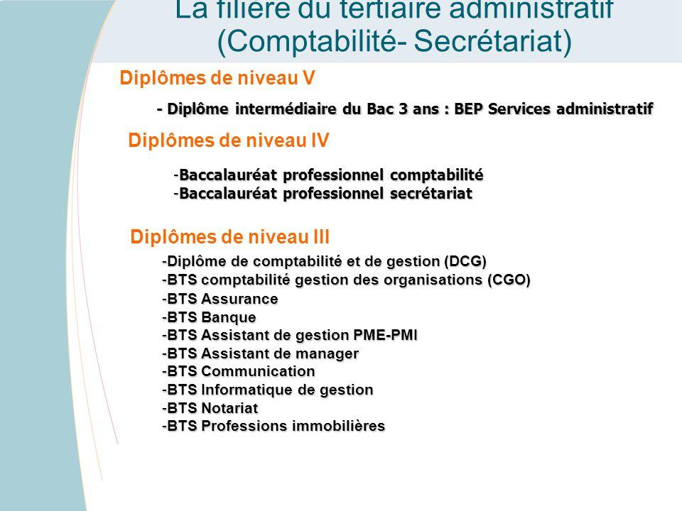 Les diplômes professionnels dans l'académie : La filière du tertiaire administratif (Comptabilité- Secrétariat) Diplômes de niveau V - Diplôme interm
