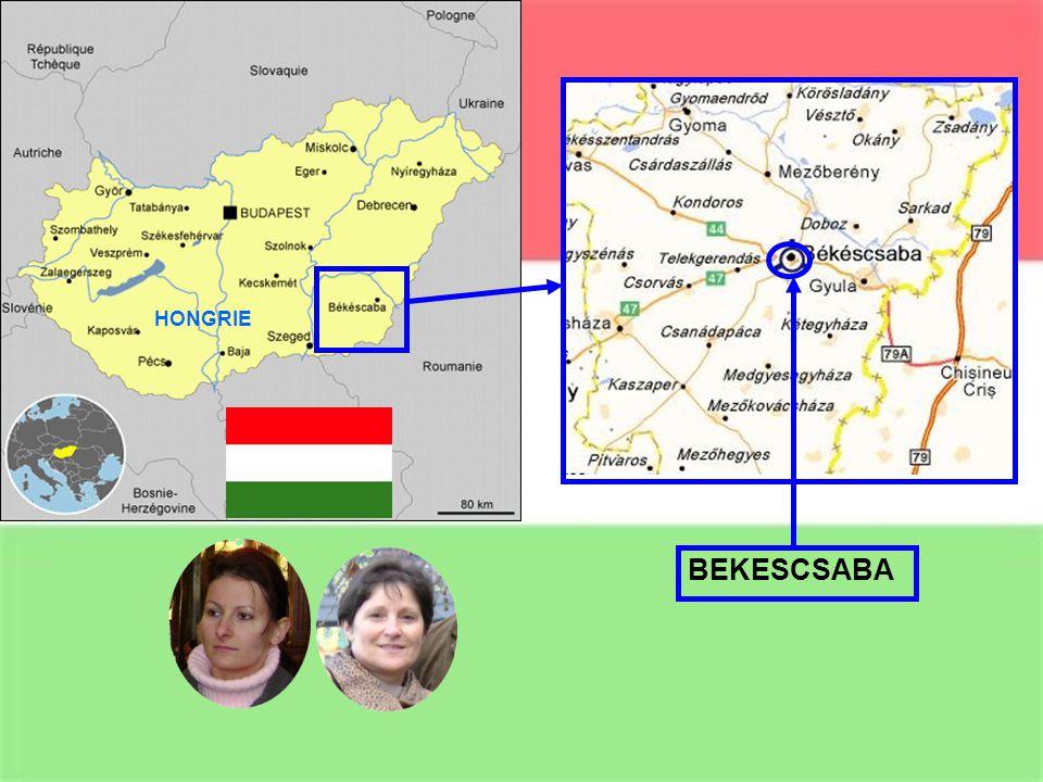 Les collègues contacts : Margarida Fontoura Antonia Popnikolova Maria Fekete Dominique Joannis