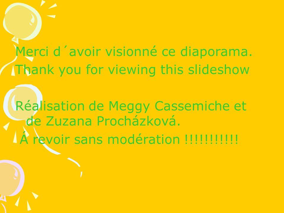 Merci d´avoir visionné ce diaporama. Thank you for viewing this slideshow Réalisation de Meggy Cassemiche et de Zuzana Procházková. Á revoir sans modé