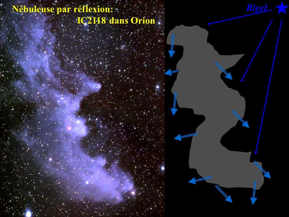 Rigel Nébuleuse par réflexion: IC2118 dans Orion