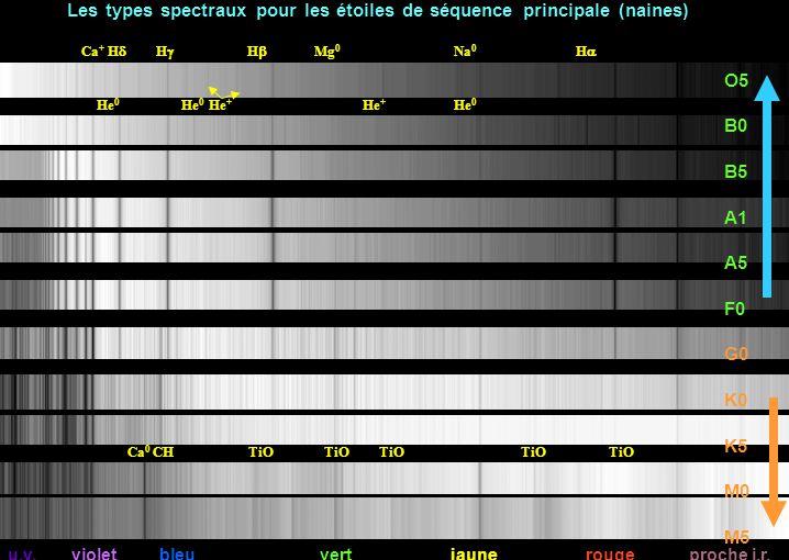 u.v. violet bleu vert jaune rouge proche i.r. Ca + H  H  H  Mg 0 Na 0 H  O5 B0 B5 A1 A5 F0 G0 K0 K5 M0 M5 Ca 0 CH TiO TiO TiO TiO TiO Les types s