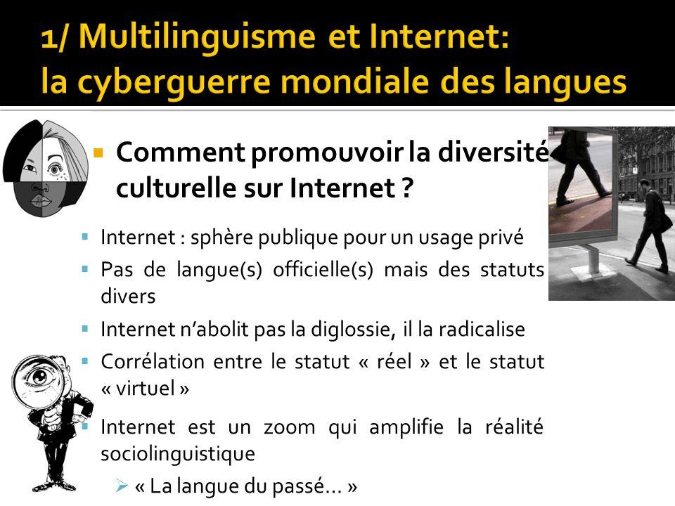  Comment promouvoir la diversité culturelle sur Internet ?  Internet : sphère publique pour un usage privé  Pas de langue(s) officielle(s) mais des