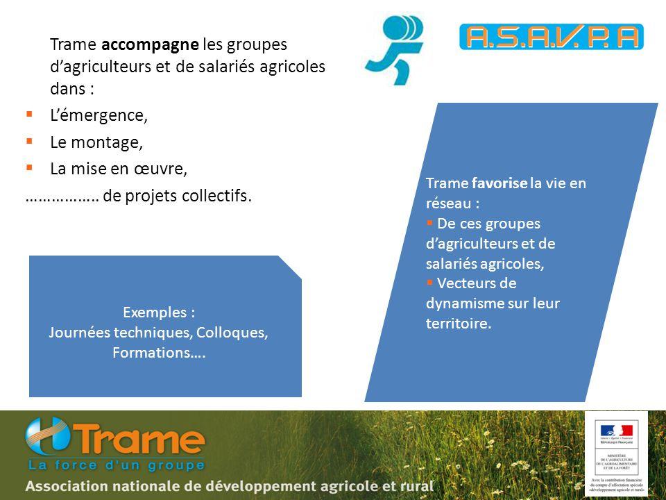 Trame accompagne les groupes d'agriculteurs et de salariés agricoles dans :  L'émergence,  Le montage,  La mise en œuvre, ……………..