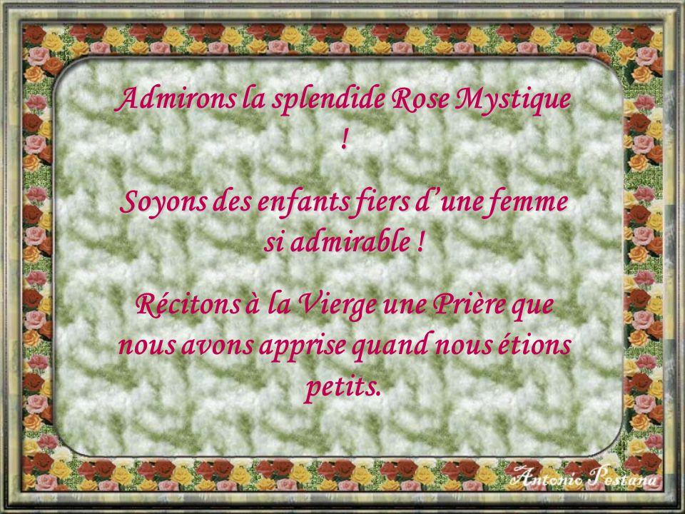Admirons la splendide Rose Mystique .Soyons des enfants fiers d'une femme si admirable .