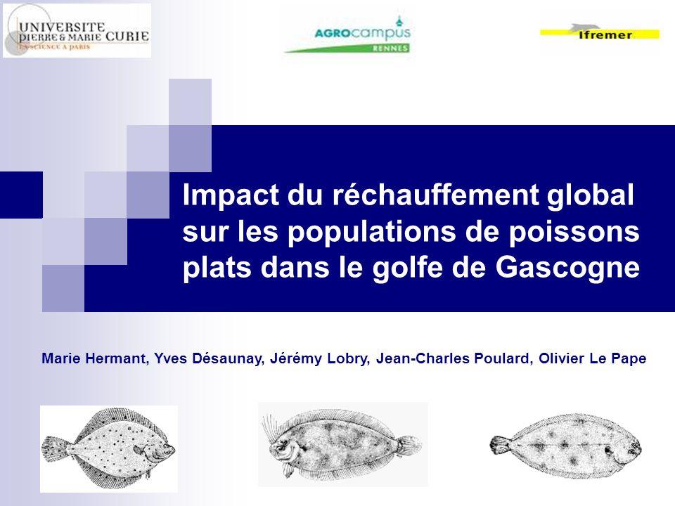 Impact du réchauffement global sur les populations de poissons plats dans le golfe de Gascogne Marie Hermant, Yves Désaunay, Jérémy Lobry, Jean-Charle