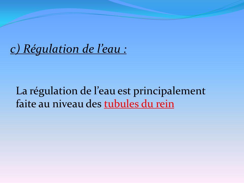 c) Régulation de l'eau : La régulation de l'eau est principalement faite au niveau des tubules du rein