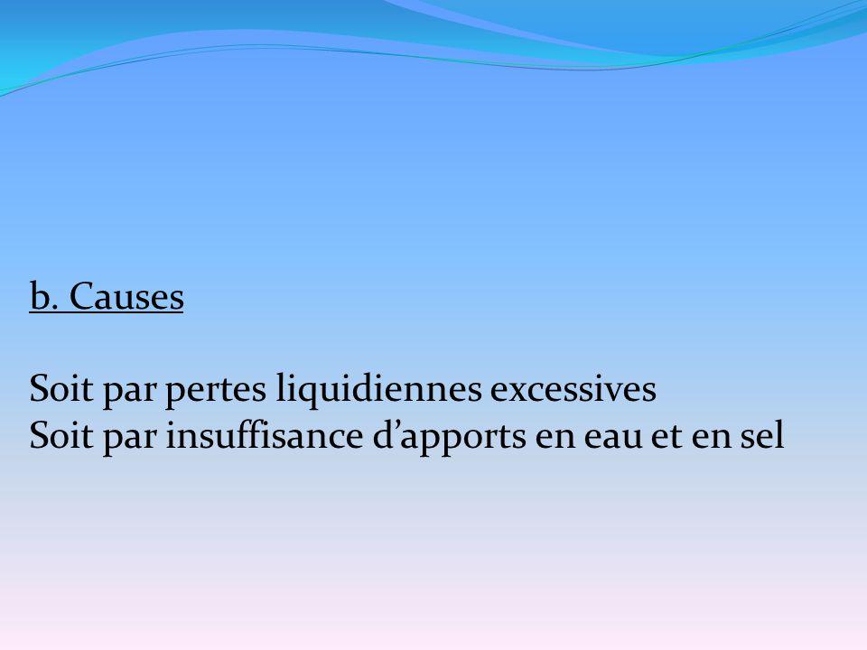 b. Causes Soit par pertes liquidiennes excessives Soit par insuffisance d'apports en eau et en sel