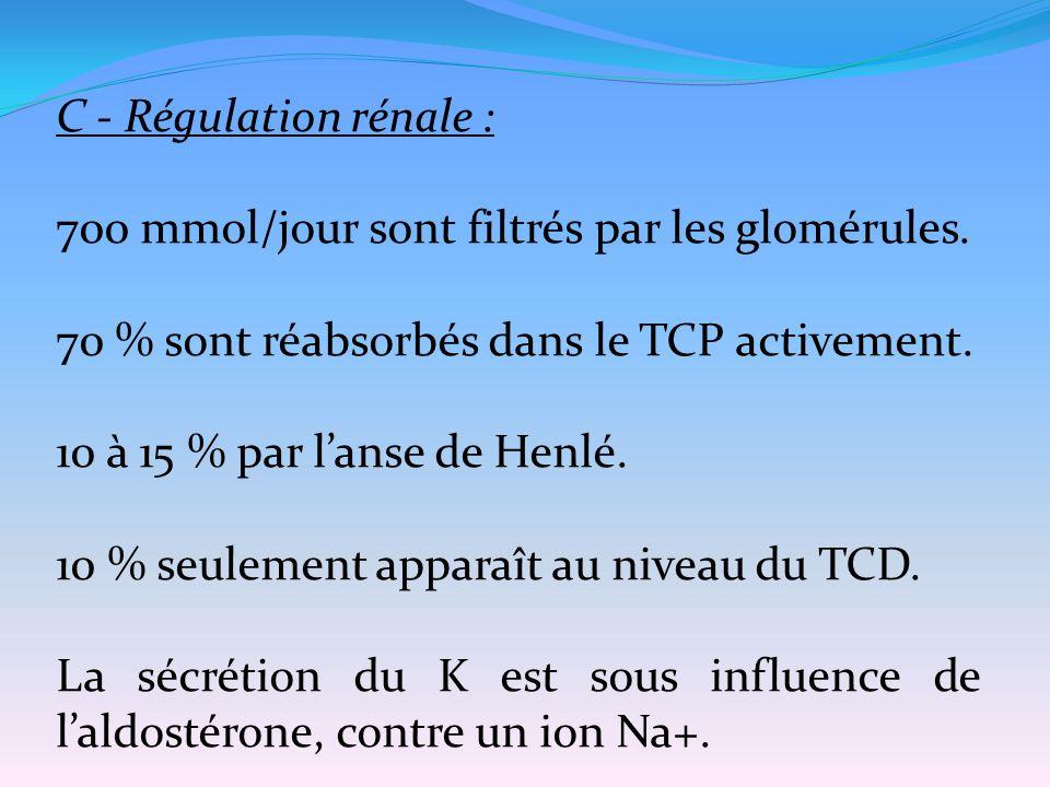 C - Régulation rénale : 700 mmol/jour sont filtrés par les glomérules. 70 % sont réabsorbés dans le TCP activement. 10 à 15 % par l'anse de Henlé. 10
