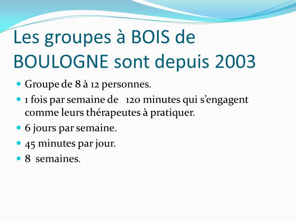 Les groupes à BOIS de BOULOGNE sont depuis 2003 Groupe de 8 à 12 personnes. 1 fois par semaine de 120 minutes qui s'engagent comme leurs thérapeutes à