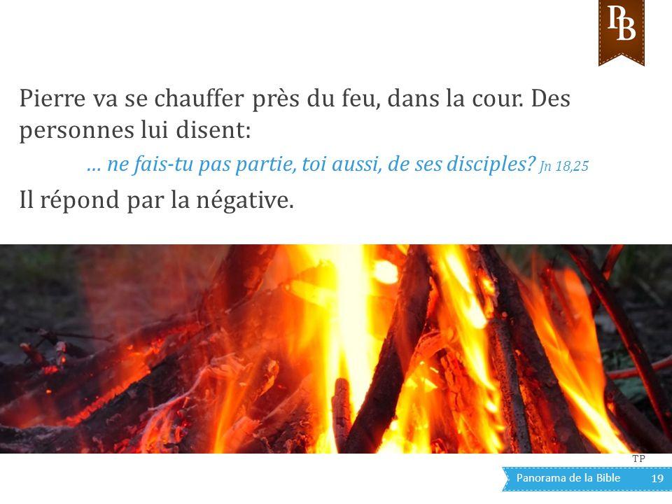 Panorama de la Bible 19 Pierre va se chauffer près du feu, dans la cour. Des personnes lui disent: … ne fais-tu pas partie, toi aussi, de ses disciple