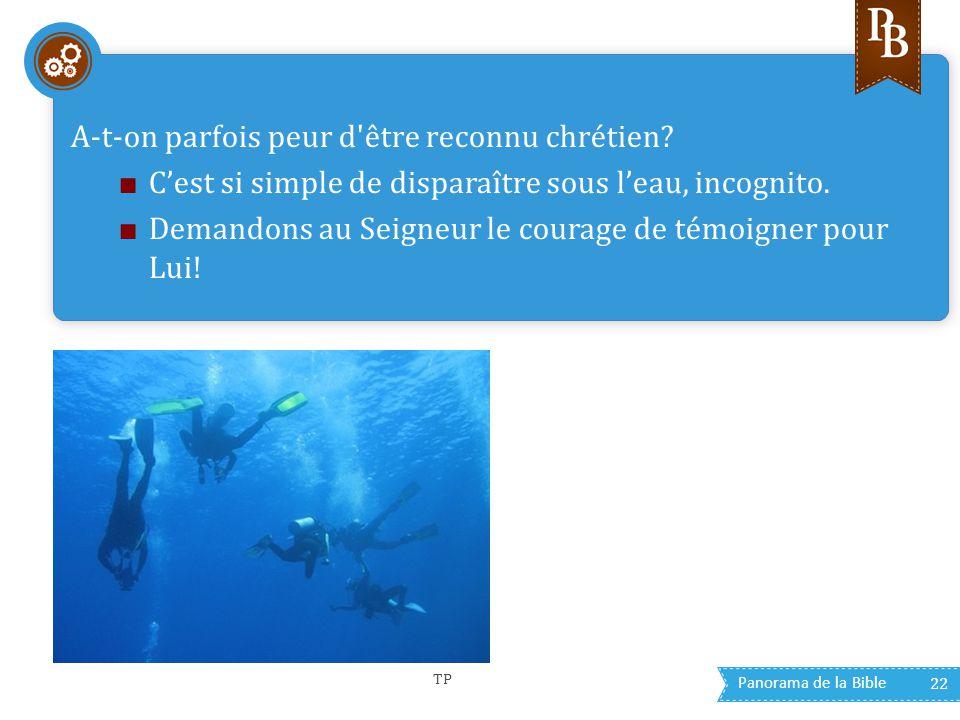 Panorama de la Bible 22 A-t-on parfois peur d'être reconnu chrétien? ■ C'est si simple de disparaître sous l'eau, incognito. ■ Demandons au Seigneur l