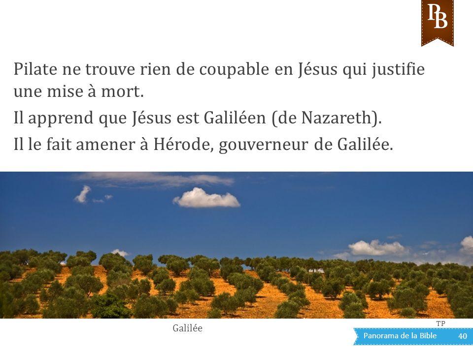 Panorama de la Bible 40 Pilate ne trouve rien de coupable en Jésus qui justifie une mise à mort. Il apprend que Jésus est Galiléen (de Nazareth). Il l