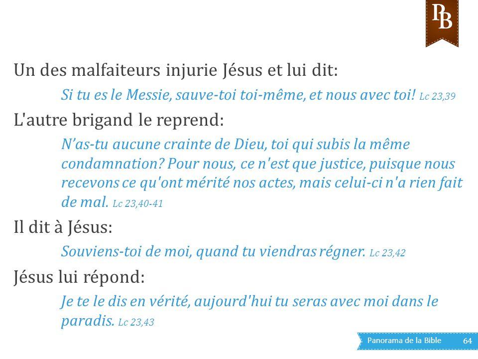 Panorama de la Bible 64 Un des malfaiteurs injurie Jésus et lui dit: Si tu es le Messie, sauve-toi toi-même, et nous avec toi! Lc 23,39 L'autre brigan