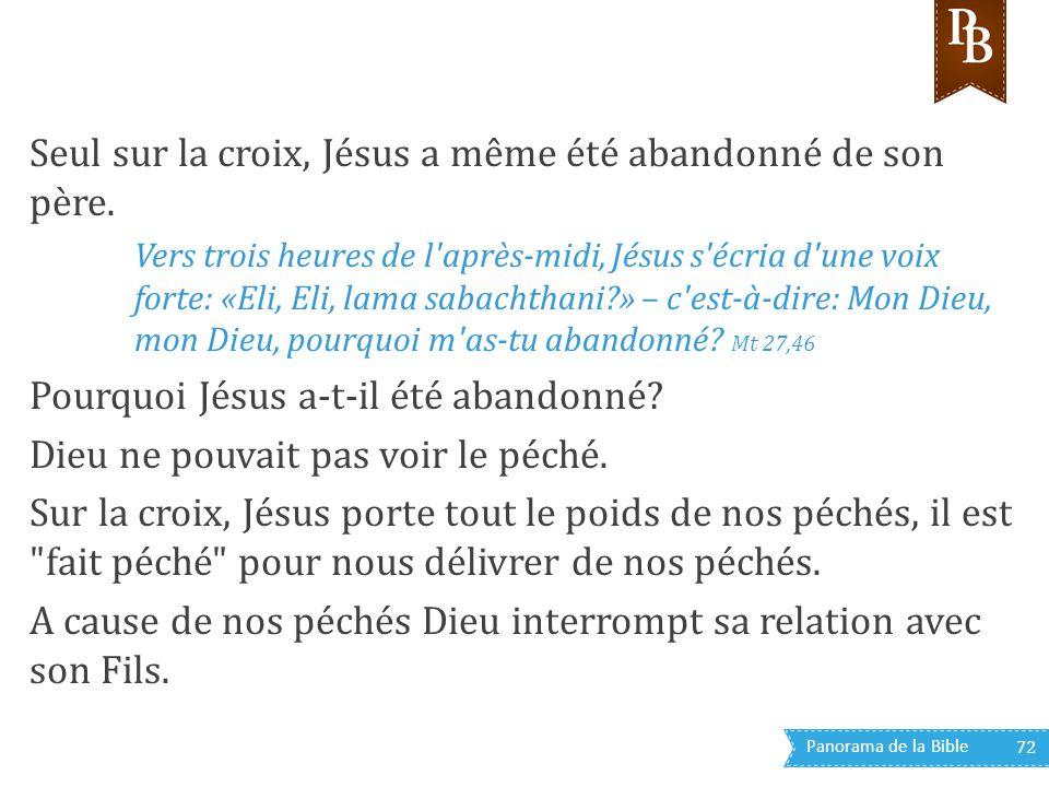 Panorama de la Bible 72 Seul sur la croix, Jésus a même été abandonné de son père. Vers trois heures de l'après-midi, Jésus s'écria d'une voix forte: