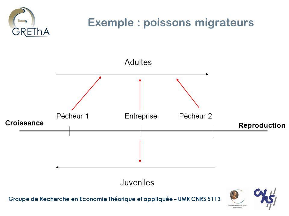 Groupe de Recherche en Economie Théorique et appliquée – UMR CNRS 5113 Exemple : poissons migrateurs Reproduction Croissance Pêcheur 1EntreprisePêcheur 2 Adultes Juveniles