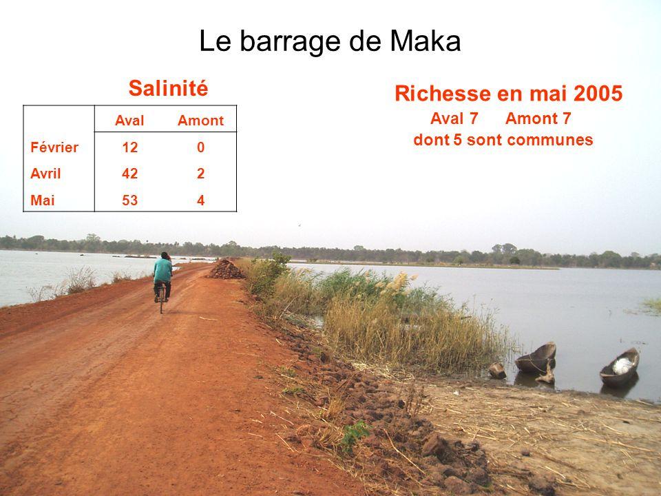 11 Le barrage de Maka Salinité AvalAmont Février120 Avril422 Mai534 Richesse en mai 2005 Aval 7 Amont 7 dont 5 sont communes