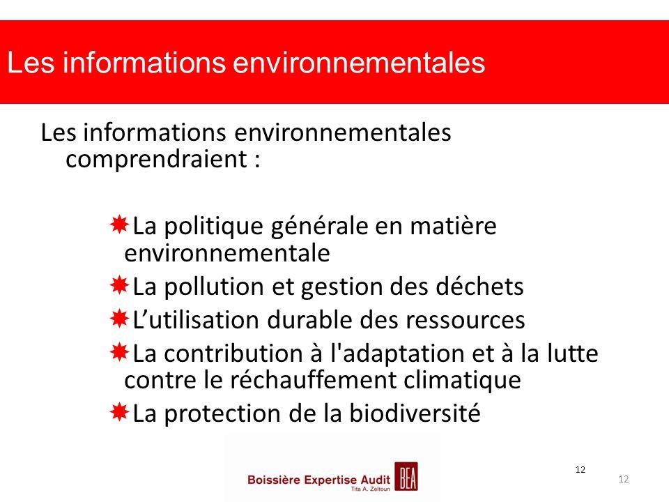 Les informations environnementales Les informations environnementales comprendraient :  La politique générale en matière environnementale  La pollut