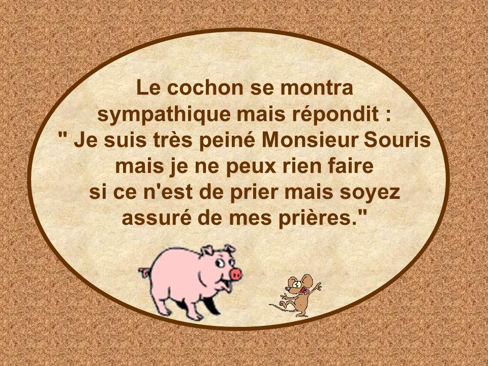 Le cochon se montra sympathique mais répondit : Je suis très peiné Monsieur Souris mais je ne peux rien faire si ce n est de prier mais soyez assuré de mes prières.