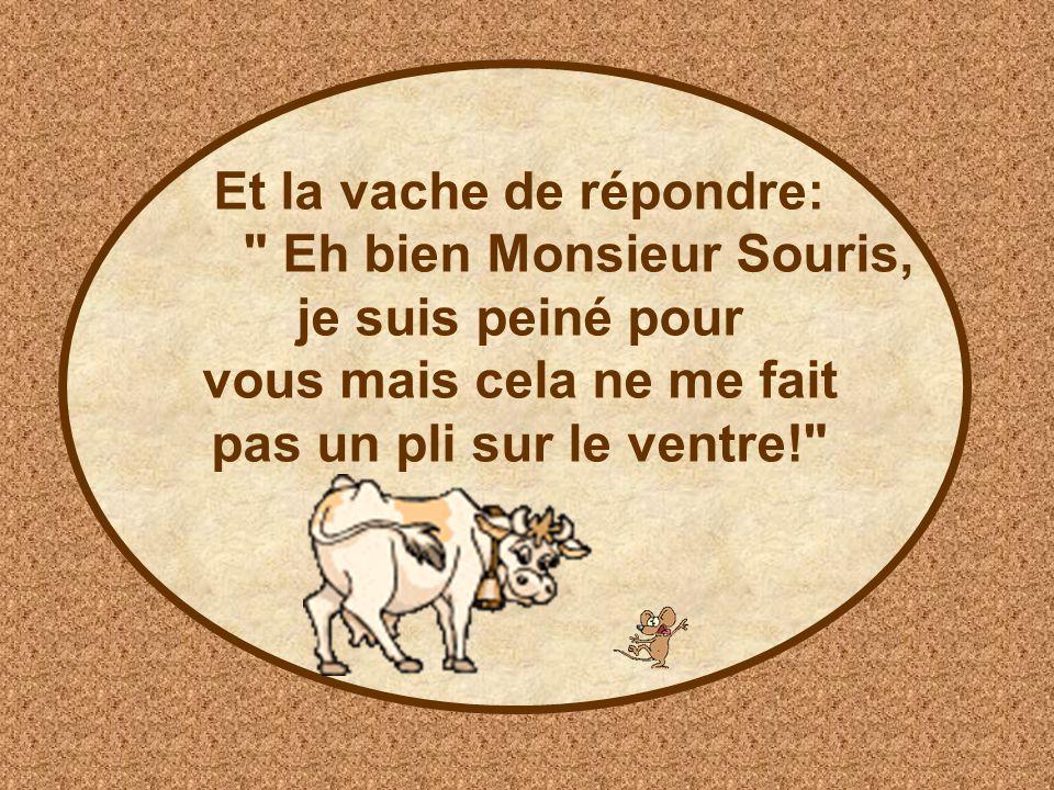 Et la vache de répondre: Eh bien Monsieur Souris, je suis peiné pour vous mais cela ne me fait pas un pli sur le ventre!