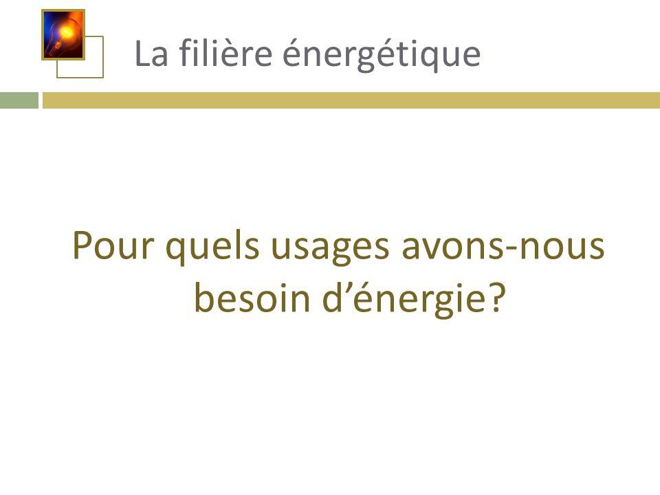 Pour quels usages avons-nous besoin d'énergie? La filière énergétique