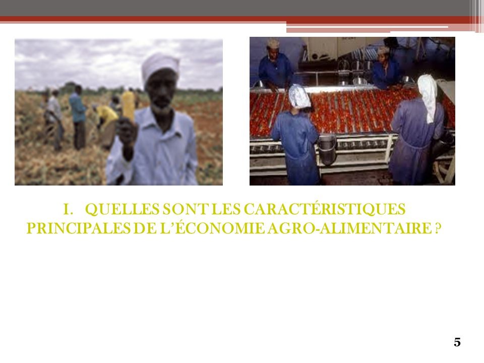 5 I. QUELLES SONT LES CARACTÉRISTIQUES PRINCIPALES DE L'ÉCONOMIE AGRO-ALIMENTAIRE ?