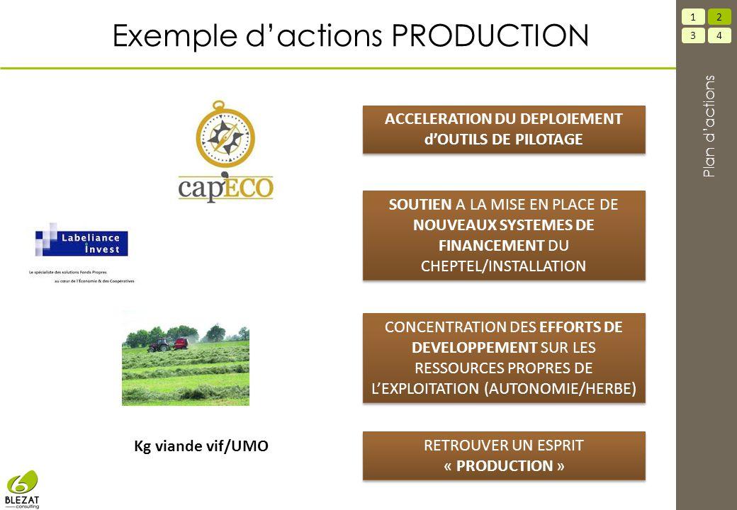 Exemple d'actions PRODUCTION SOUTIEN A LA MISE EN PLACE DE NOUVEAUX SYSTEMES DE FINANCEMENT DU CHEPTEL/INSTALLATION CONCENTRATION DES EFFORTS DE DEVELOPPEMENT SUR LES RESSOURCES PROPRES DE L'EXPLOITATION (AUTONOMIE/HERBE) ACCELERATION DU DEPLOIEMENT d'OUTILS DE PILOTAGE RETROUVER UN ESPRIT « PRODUCTION » Kg viande vif/UMO 34 12 Plan d'actions