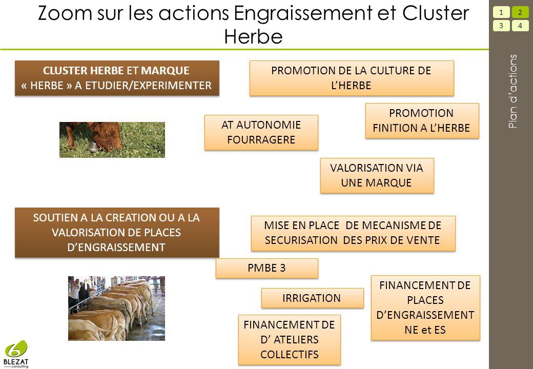 Zoom sur les actions Engraissement et Cluster Herbe SOUTIEN A LA CREATION OU A LA VALORISATION DE PLACES D'ENGRAISSEMENT 34 12 Plan d'actions CLUSTER
