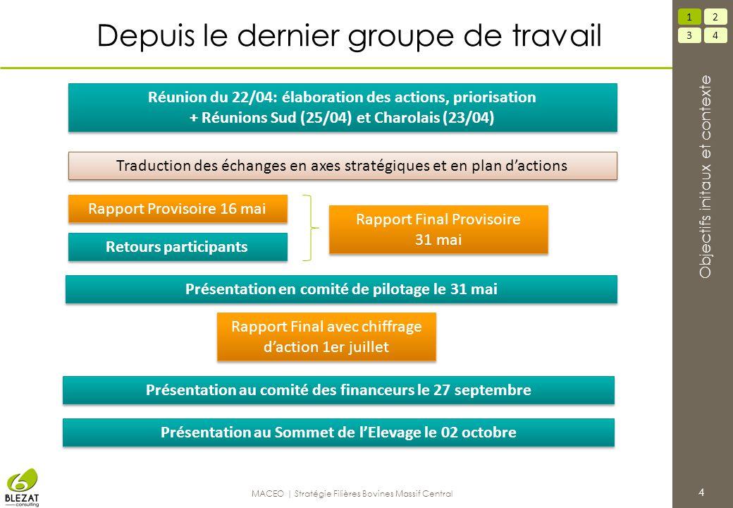 Depuis le dernier groupe de travail 4 34 12 Objectifs initaux et contexte MACEO | Stratégie Filières Bovines Massif Central Traduction des échanges en