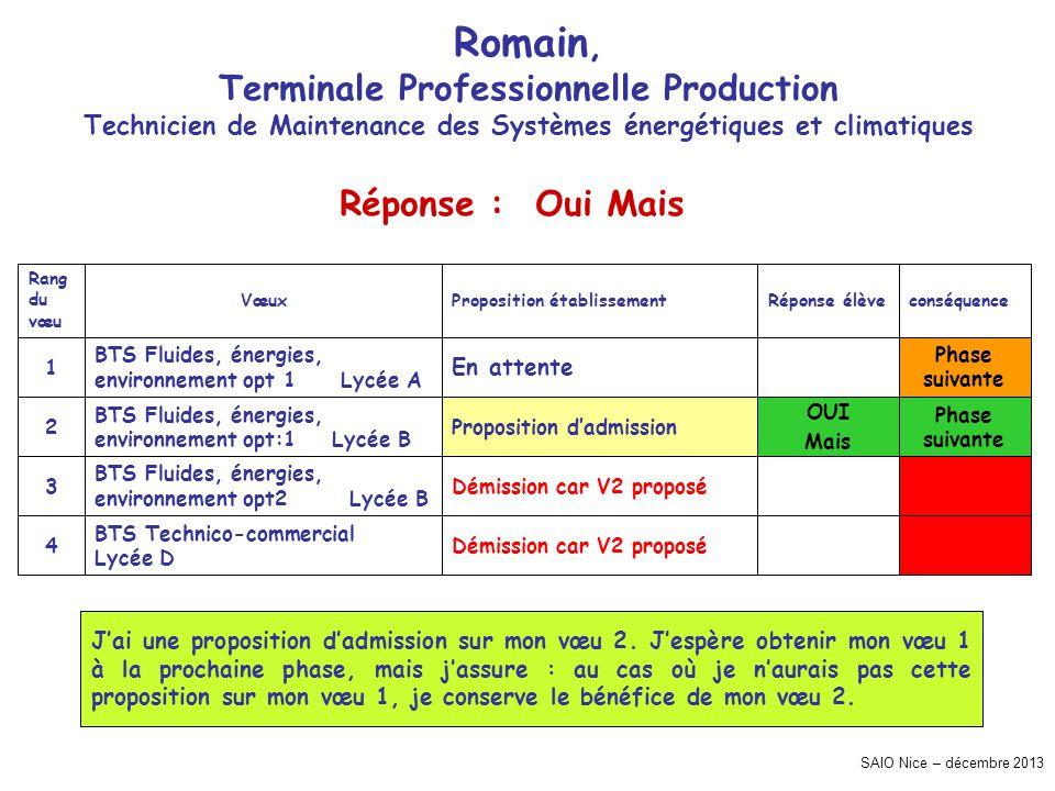 SAIO Nice – décembre 2013 Romain, Terminale Professionnelle Production Technicien de Maintenance des Systèmes énergétiques et climatiques Phase suivan