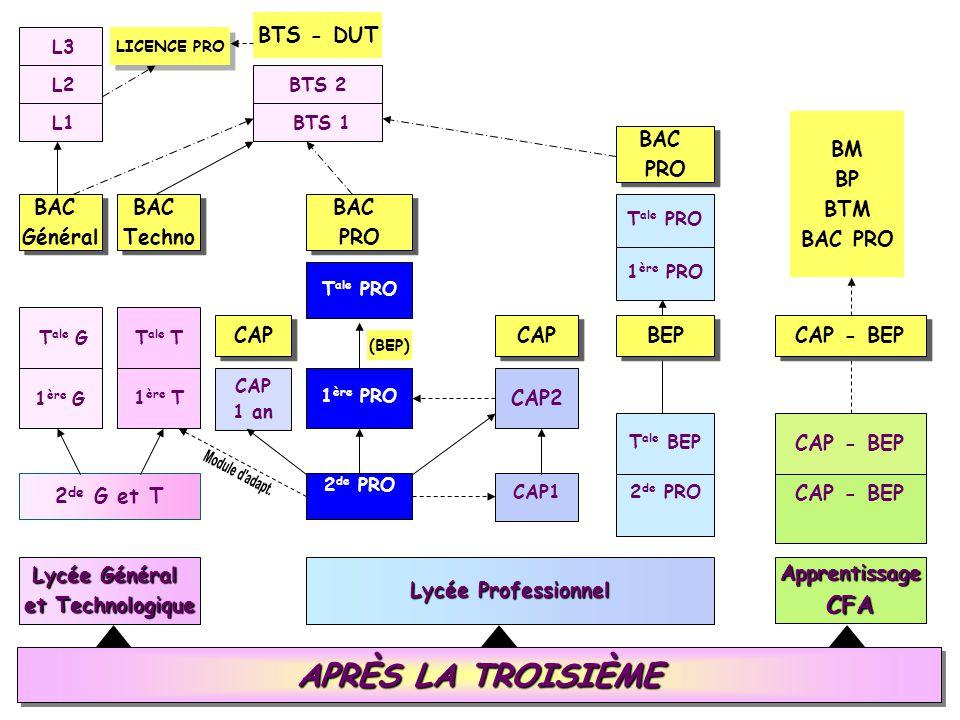 APRÈS LA TROISIÈME Lycée Général et Technologique Lycée Professionnel ApprentissageCFA 2 de G et T 1 ère G 1 ère T T ale GT ale T BAC Général BAC Géné