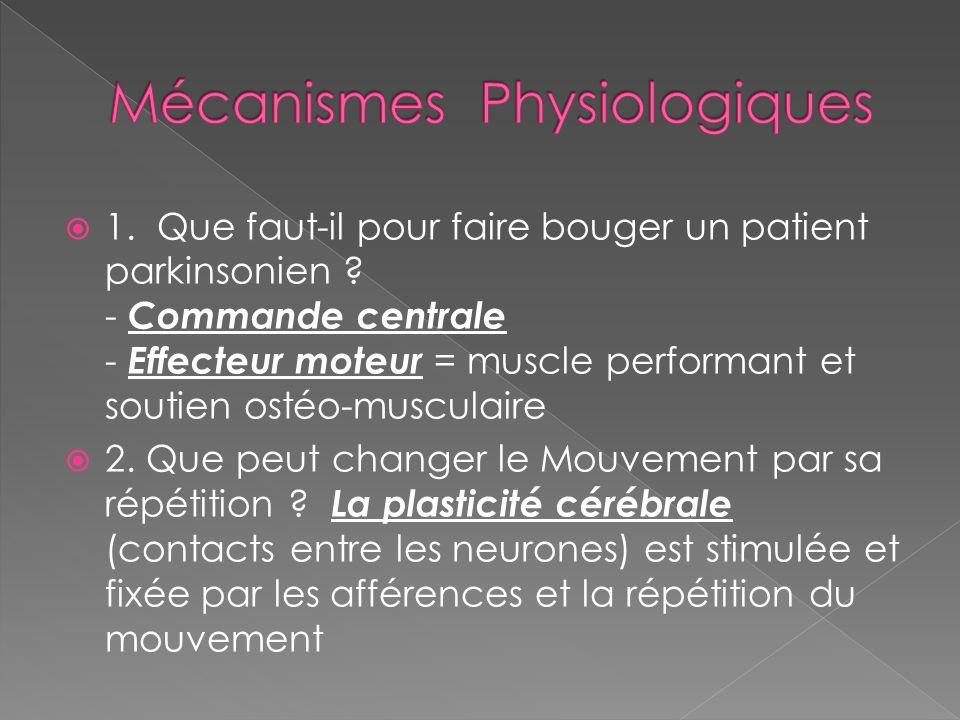  1. Que faut-il pour faire bouger un patient parkinsonien ? - Commande centrale - Effecteur moteur = muscle performant et soutien ostéo-musculaire 