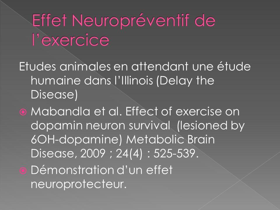 Etudes animales en attendant une étude humaine dans l'Illinois (Delay the Disease)  Mabandla et al. Effect of exercise on dopamin neuron survival (le
